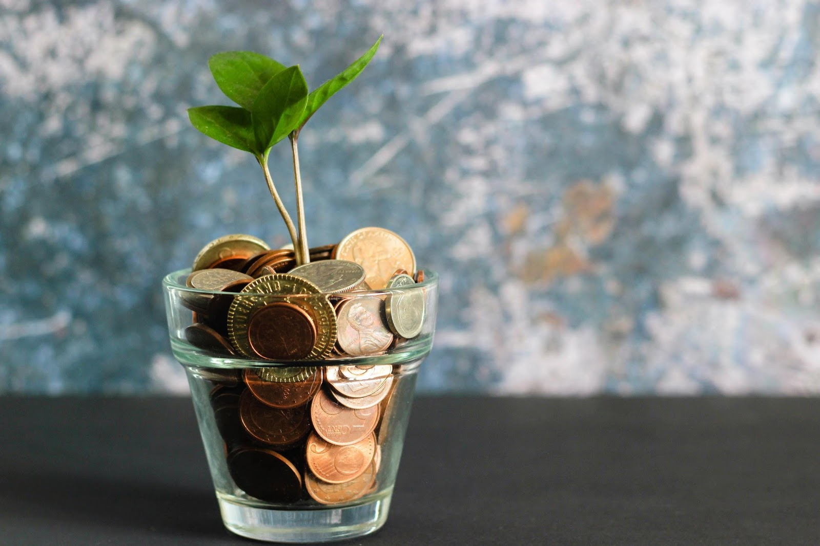 What is a Health Cash Plan?